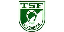 Logo TSF Ditzingen - Beratung durch Flowcon